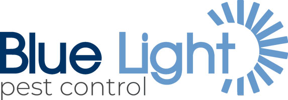 Pest Control across Surrey, Hampshire and Berkshire by Blue Light Pest Control.